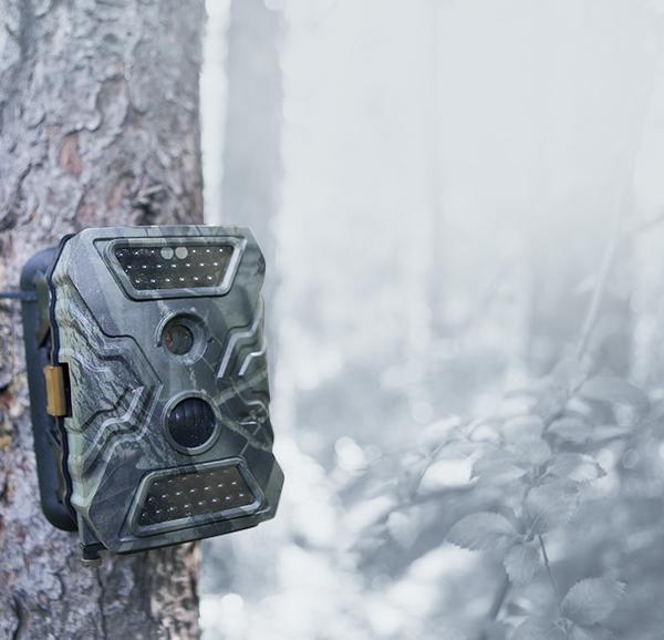 Medžioklinės kameros